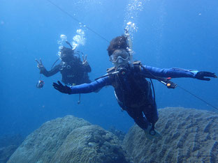 石垣島でのんびりダイビング「再会」ヒートハートクラブ