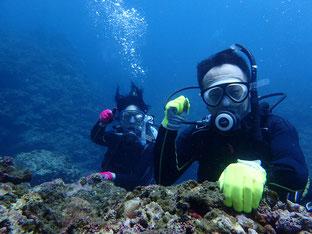 石垣島でのんびりダイビング「頭上通過」ヒートハートクラブ」