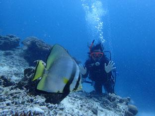 石垣島でのんびりダイビング「またリベンジ」ヒートハートクラブ