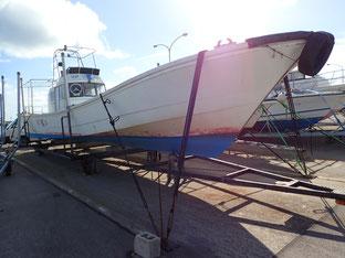 石垣島でのんびりダイビング「台風6号」ヒートハートクラブ