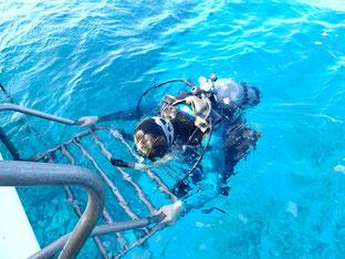 石垣島でのんびりダイビング「リフレシュダイブ」ヒートハートクラブ