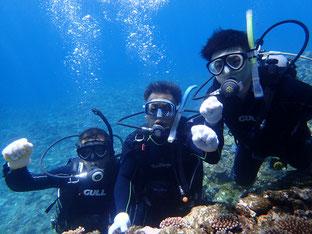石垣島でのんびりダイビング「ジェントルメンズ祭り」ヒートハートクラブ