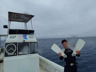 石垣島でのんびりダイビング「お正月ダイブ」ヒートハートクラブ
