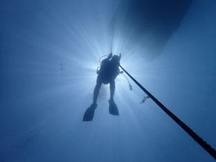 石垣島でのんびりダイビング「夏の日差し」ヒートハートクラブ
