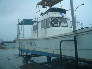 石垣島でのんびりダイビング「冬将軍の到来」ヒートハートクラブ