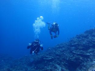 石垣島でのんびりダイビング「40年ぶりの再会」