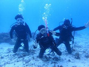 石垣島でのんびりダイビング「誕生日ダイブ」ヒートハートクラブ