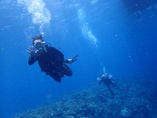 石垣島でのんびりダイビング「急かされずダイブ」ヒートハートクラブ
