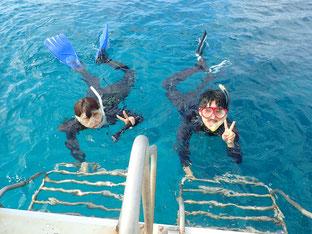 石垣島でのんびりダイビング「ファーストダイブ」ヒートハートクラブ