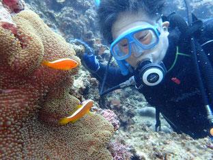 石垣島でのんびりダイビング「4年ぶりのダイビング」ヒートハートクラブ