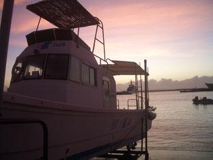石垣島でのんびりダイビング「季節外れの台風」ヒートハートクラブ