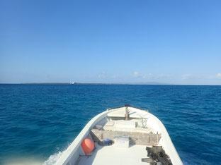 石垣島でのんびりダイビング「西へ」ヒートハートクラブ