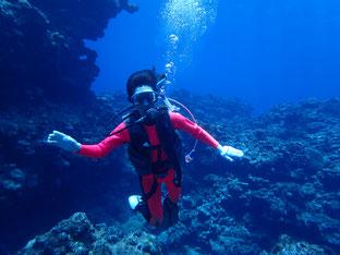 石垣島でのんびりダイビング「北国の人」ヒートハートクラブ