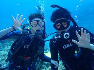 石垣島でのんびりダイビング「リフレッシュダイブ」ヒートハートクラブ