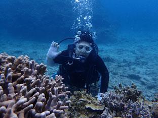 石垣島でのんびりダイビング「THE体験ダイバー」ヒートハートクラブ