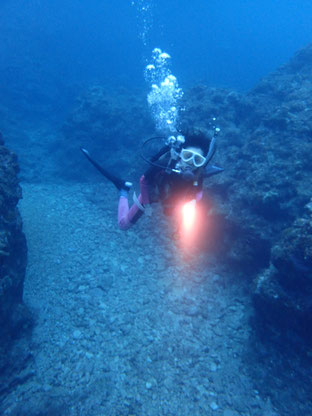 石垣島でのんびりダイビング「プライベートダイビング」ヒートハートクラブ