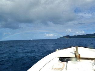 石垣島でのんびりダイビング「虹」ヒートハートクラブ