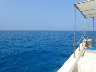 石垣島でのんびりダイビング「快晴の石垣島」ヒートハートクラブ