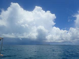 石垣島でのんびりダイビング「スコール」ヒートハートクラブ
