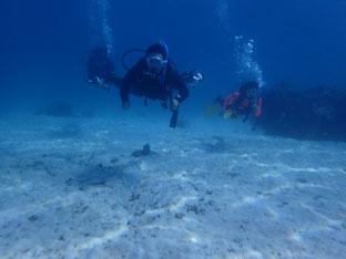 石垣島でのんびりダイビング「グルクンの向うから」ヒートハートクラブ