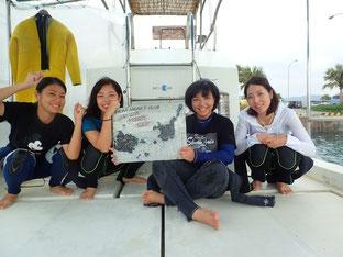 石垣島でのんびりダイビング「地元3人娘」ヒートハートクラブ