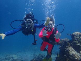 石垣島でのんびりダイビング「感動」ヒートハートクラブ