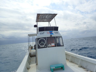 石垣島でのんびりダイビング「20年ぶり」ヒートハートクラブ