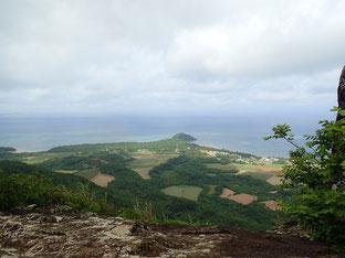 石垣島でのんびりダイビング「野底マーペー」ヒートハートクラブ