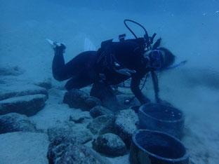 石垣島で初心者ダイビング「海底温泉」
