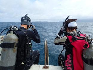 石垣島でのんびりダイビング「初ファンダイビング」ヒートハートクラブ