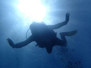 石垣島でのんびりダイビング「コロナリベンジダイブ」ヒートハートクラブ