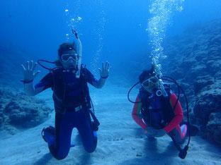 石垣島でのんびりダイビング「海亀カーニバル」ヒートハートクラブ