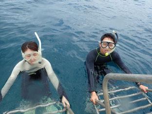 石垣島でのんびりダイビング「体験ダイビング(2ダイブ)」ヒートハートクラブ