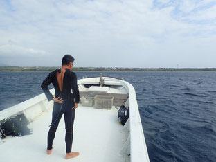 石垣島でのんびりダイビング「連休サプライズ第2弾」ヒートハートクラブ