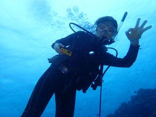 石垣島でのんびりダイビング「台風10号」ヒートハートクラブ
