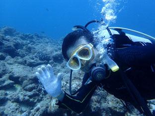 石垣島でのんびりダイビング「奇跡?」ヒートハートクラブ