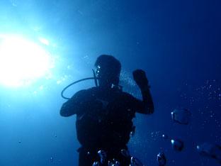 石垣島でのんびりダイビング「約一年ぶり」ヒートハートクラブ