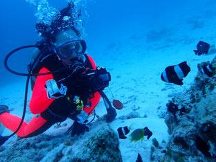 石垣島でのんびりダイビング「水中撮影挑戦」ヒートハートクラブ