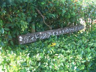 石垣島でのんびりダイビング「草刈りDAY]ヒートハートクラブ