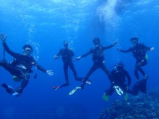 石垣島でのんびりダイビング「貸し切りです」ヒートハートクラブ