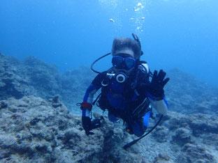 石垣島でのんびりダイビング「ひとくぎり」ヒートハートクラブ