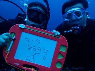 石垣島でのんびりダイビング「マンタ待ち」ヒートハートクラブ