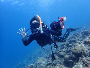 石垣島でのんびりダイビング「水中撮影」ヒートハートクラブ