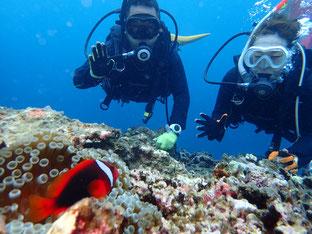 石垣島でのんびりダイビング「結婚記念」ヒートハートクラブ