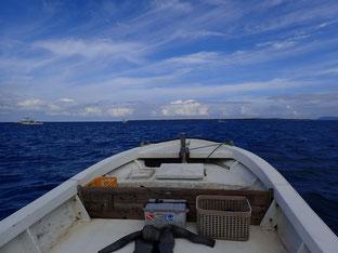 石垣島でのんびりダイビング「冬が来る前に」ヒートハートクラブ