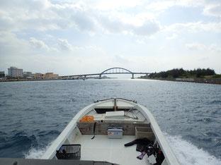 石垣島でのんびりダイビング「クジラの歌声」