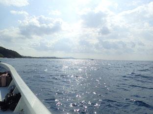 石垣島でのんびりダイビング「リベンジならず」ヒートハートクラブ
