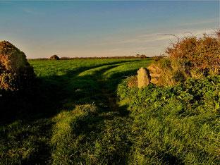 Cornwall ein Traum von Licht und Landschaft