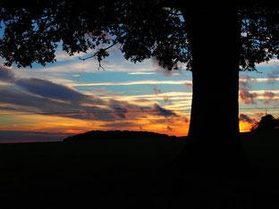 der Abend-Sonne entgegen bis sie verschwand