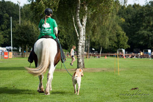 "Prüfung ""Horse & Dog"""